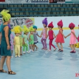 Festyn Karwina 2017 (11)