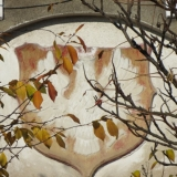 01.11.15 Cieszyn-Kojkowice01.11.15 IMG_2575.jpg