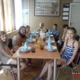 oboz Karwina SMP 1208
