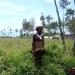 tadfranek_papuanowagwinea-0120_tf_i