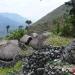 tadfranek_papuanowagwinea-0198_tf_i
