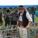 majtrowstwa-w-strziganiu-owiec-34