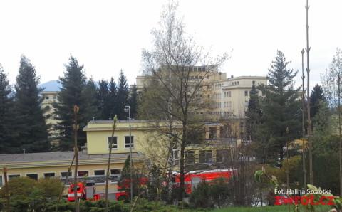 Sosna szpital