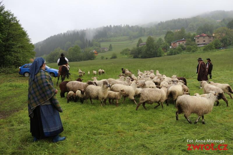 Pomiyszali łowce w Koszarzyskach