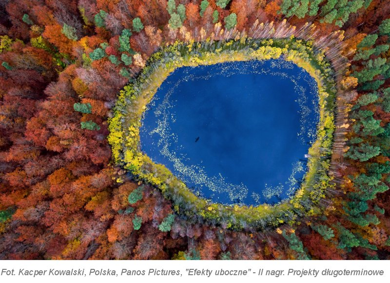 Światowy fotoreportaż w Ostrawie