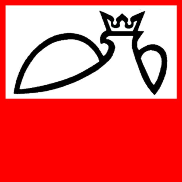 Stowarzyszenie Wspólnota Polska wybrało prezesa