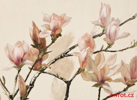 Na spacer z magnoliami