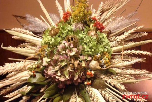 Kolory orłowskiej jesieni na wystawie