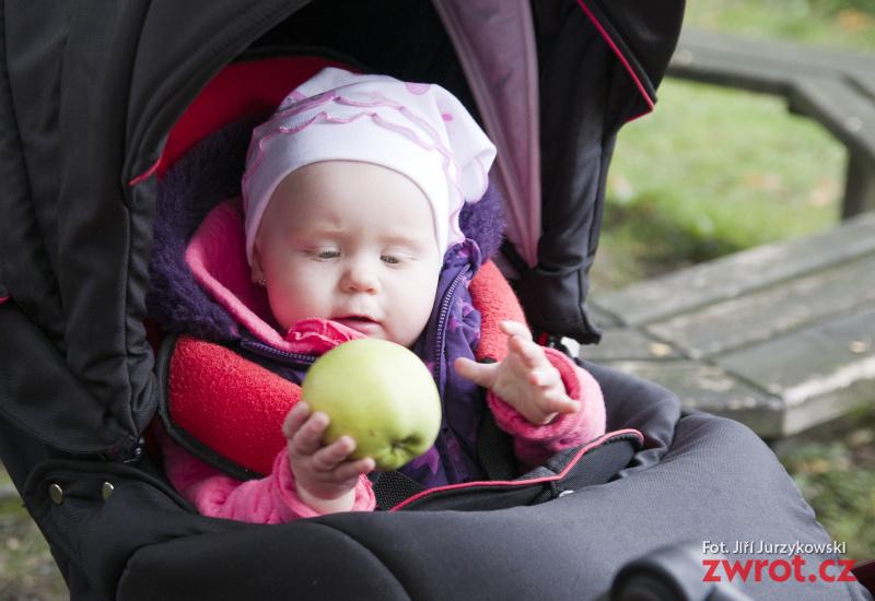 Półtora tony jabłek wykorzystano podczas Jabłkowego Dnia