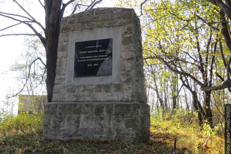 """Spacery ze """"Zwrotem"""": Pomnik cesarza w Kojkowicach"""