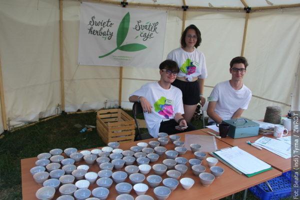 Herbaciany piknik na Wzgórzu Zamkowym