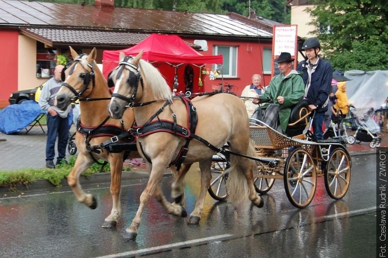 Deszcz i błoto nie zniechęciły uczestników wyścigów zaprzęgów