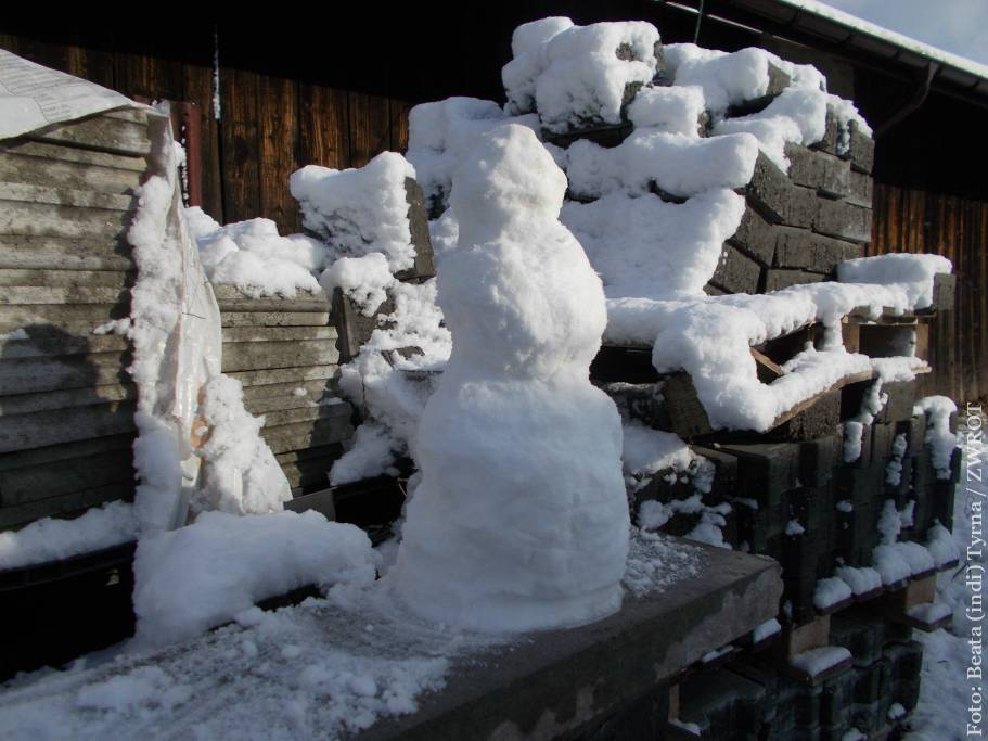 Spragnieni białej zimy