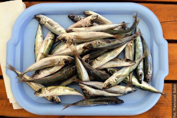 Kuchnia na Wyspach Kanaryjskich