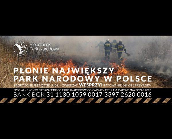 Wypalanie traw przyczyną pożaru Biebrzańskiego Parku Narodowego
