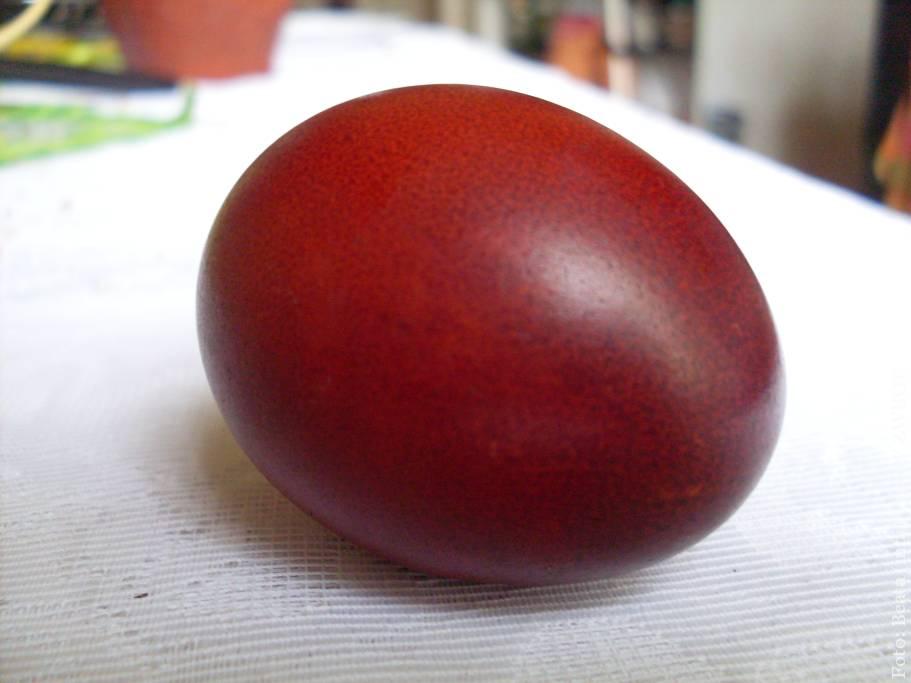 Jak pokolorować jajka tym, co mamy w domu?