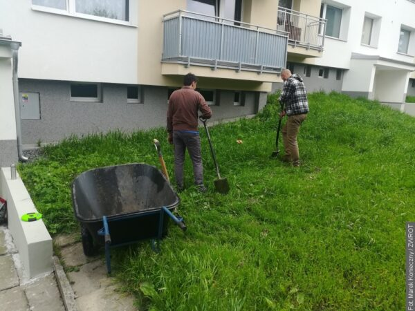 Zamiast betonu kwiaty i zioła. W Karwinie powstają ogródki przed blokami