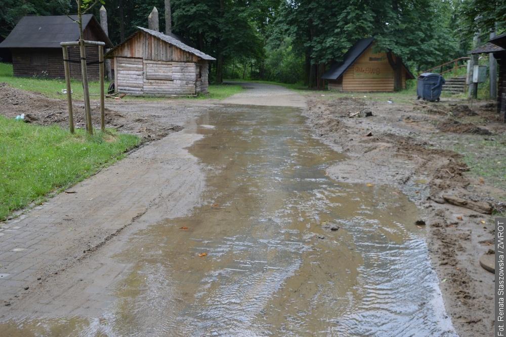 Przez Lasek Miejski w Jabłonkowie płynęła rzeka