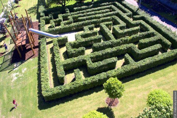 """Nowy labirynt ogrodowy w Boguminie został nazwany """"Labiryntem Mowgliego"""""""
