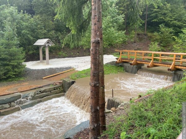 📷 Dzisiejsza sytuacja na rzekach w regionie
