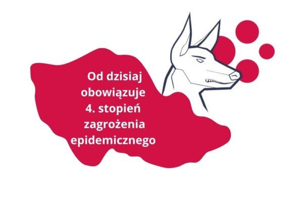Od dzisiaj w Czechach IV stopień zagrożenia epidemicznego. Zobacz, co się zmienia