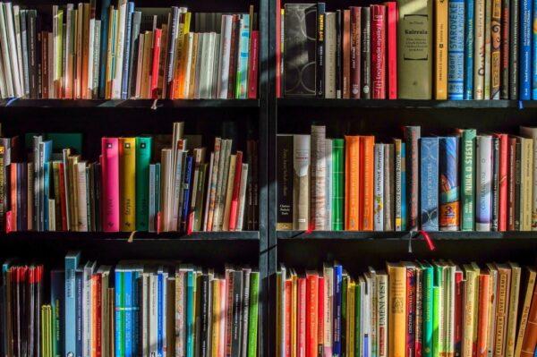 """Biblioteki oferują wypożyczanie książek """"na wynos"""""""