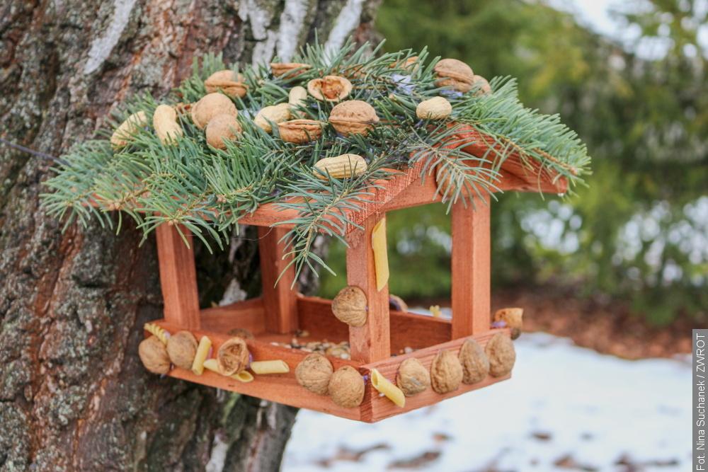 Dzieci z czeskocieszyńskich przedszkoli udekorowały karmniki dla ptaszków
