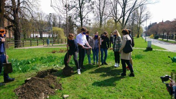 Uczniowie gimnazjum w Czeskim Cieszynie zasadzili drzewo im. Juliusza Słowackiego