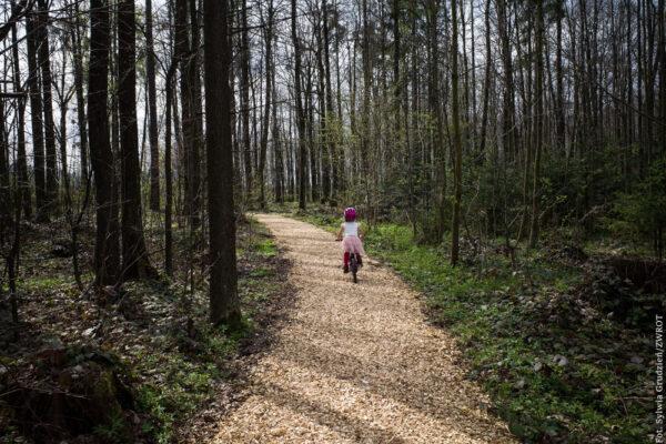 W parku w Trzyńcu usypano nowe ścieżki