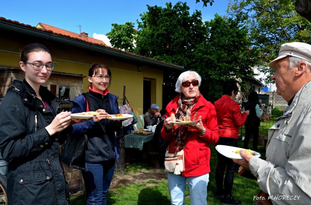 Z POCZTY REDAKCYJNEJ: Smażenie jajecznicy w Klubie Polonus w Brnie