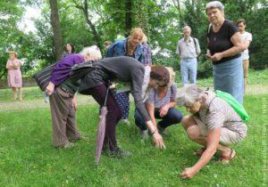 """Uczestnicy akcji """"Odkrywaj Cieszyn"""" poznawali zioła. W najbliższą sobotę zgłębiać będą temat dizajnu"""