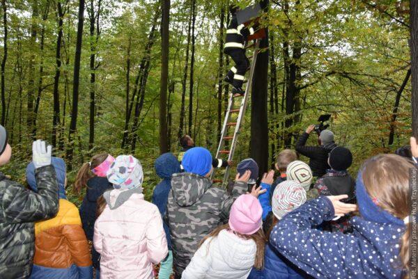 Huta wraz z dziećmi pomaga sowom